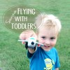 Flying with Toddlers: 5 Tips to Survive the Trip