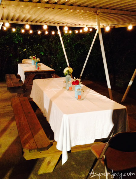 Backyard BBQ Party- the lights add so much!