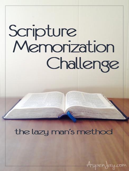 scripture memorization challenge